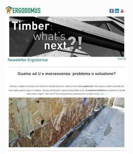 newsletter102016_timber-engineering_ergodomus